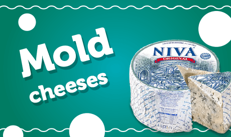 Mold cheeses